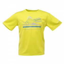 RKT050    Starcrest T-Shirt  - Colour Neon Spring