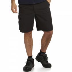 RMJ085    Crossfell Shorts  - Colour Ash