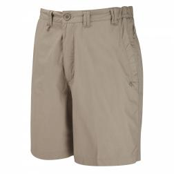 CMJ258    Kiwi Active Shorts  - Colour Beach