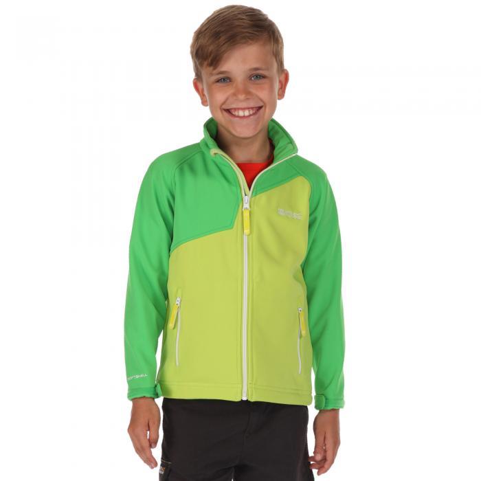 Lime Zest / Green
