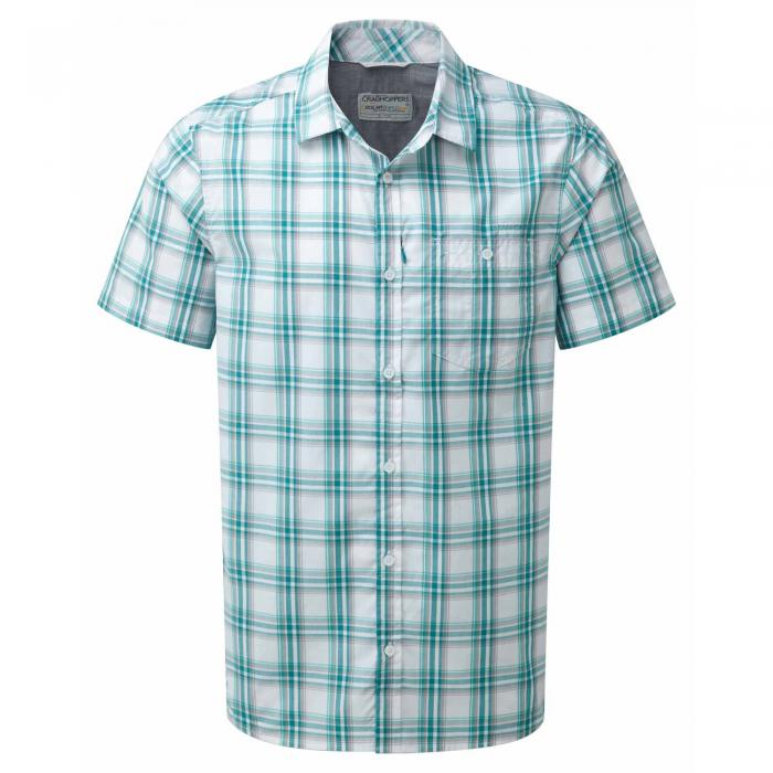Bright Teal Check