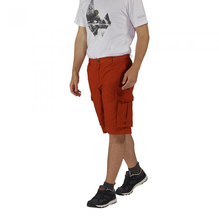 Shoreway Shorts Burnt Orange