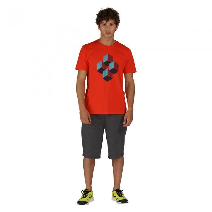 Quixotic T-Shirt Trail Blaze