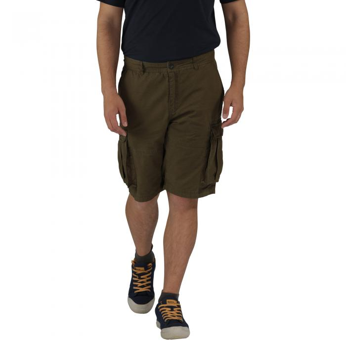Shoreway Shorts Olive Night