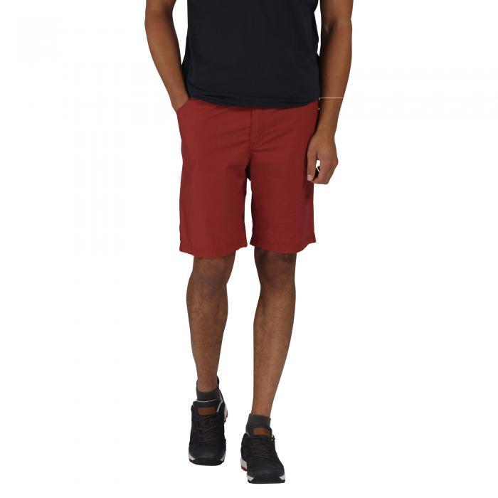 Sanjaro Shorts Cowhide