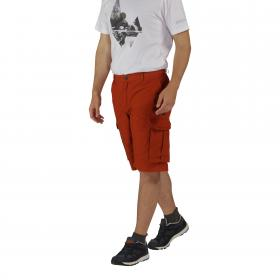 Shoreway Shorts Burnt Orange