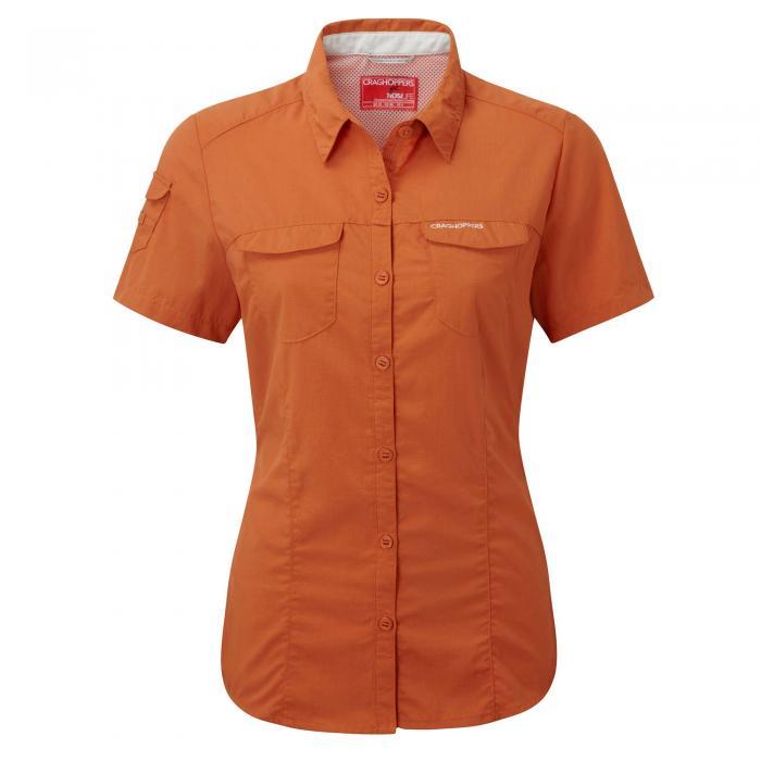 Desert Orange